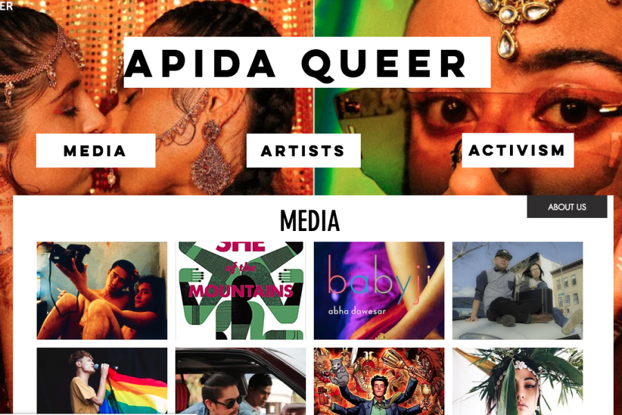 Screenshot of APIDA Queer homepage