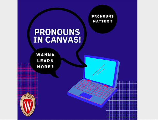 Pronouns in Canvas flyer